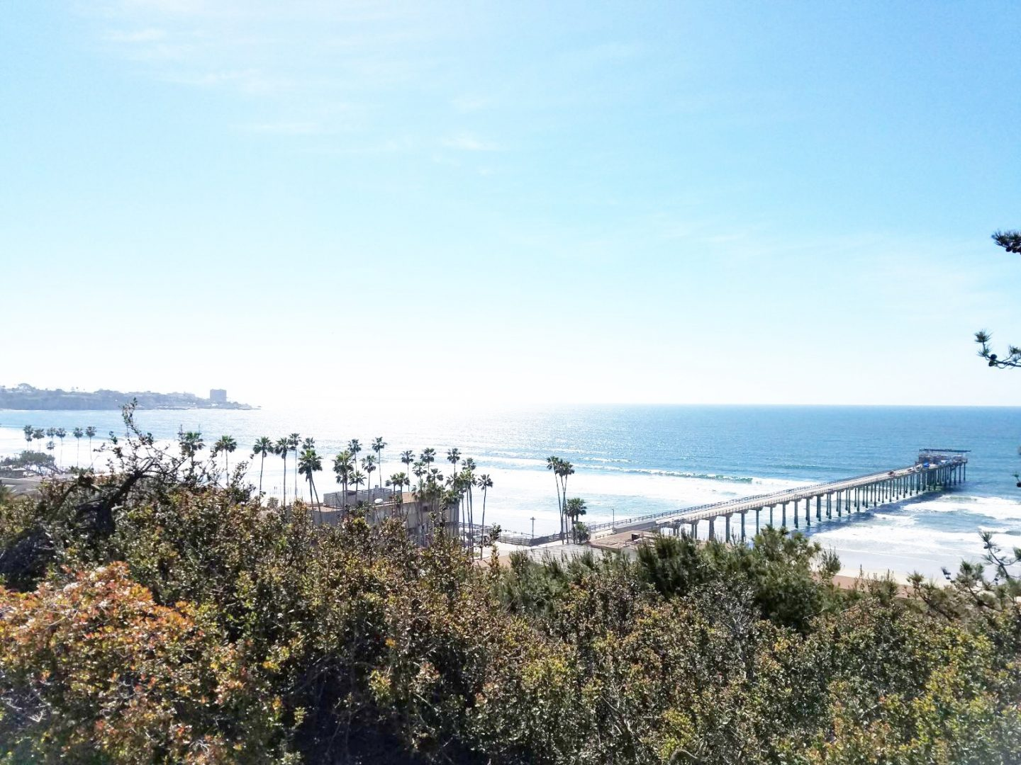 A Local's Guide to La Jolla – San Diego's Jewel