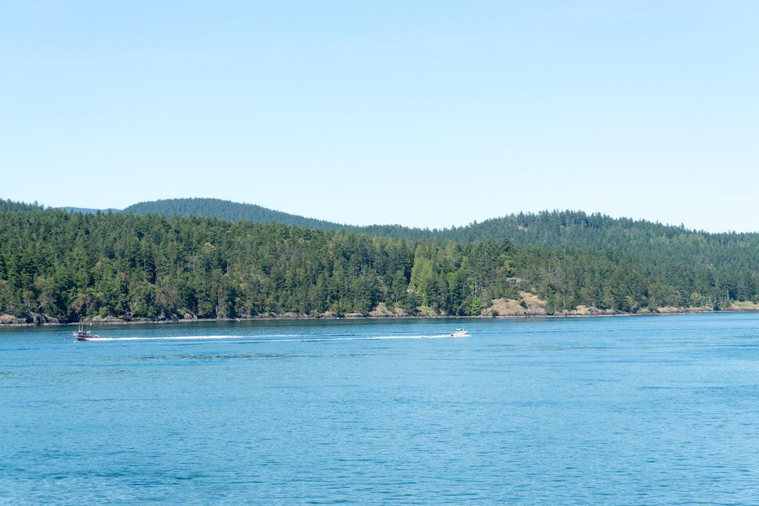 Orcas Island Ferry Views