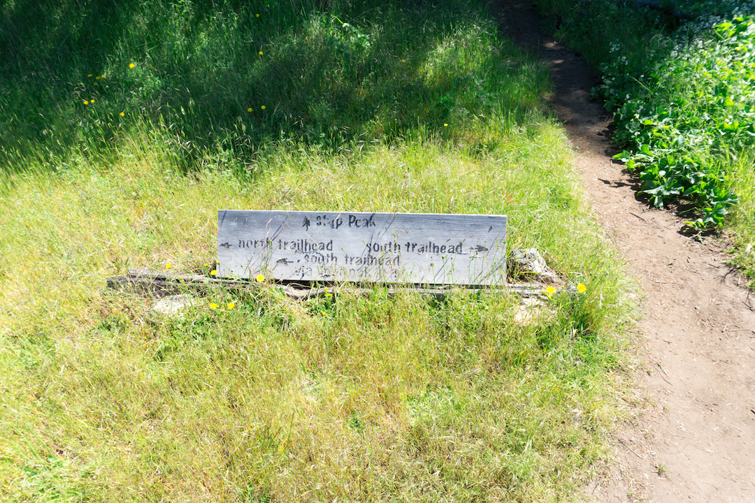 Turtleback Mountain hiking signs