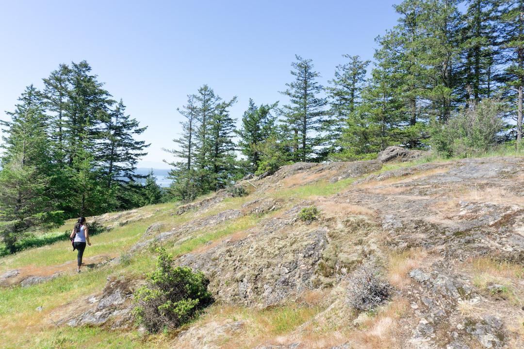 Turtleback Mt. Hike