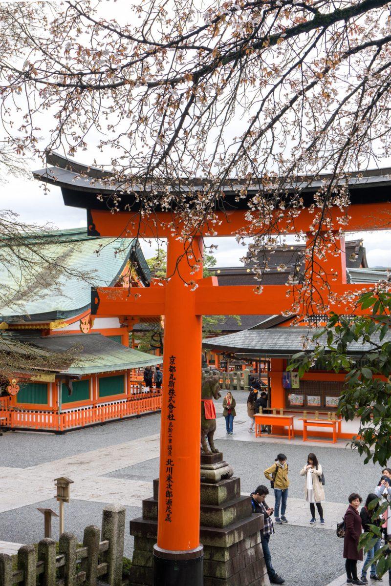 Fushimi Inari Tori Gates Spring