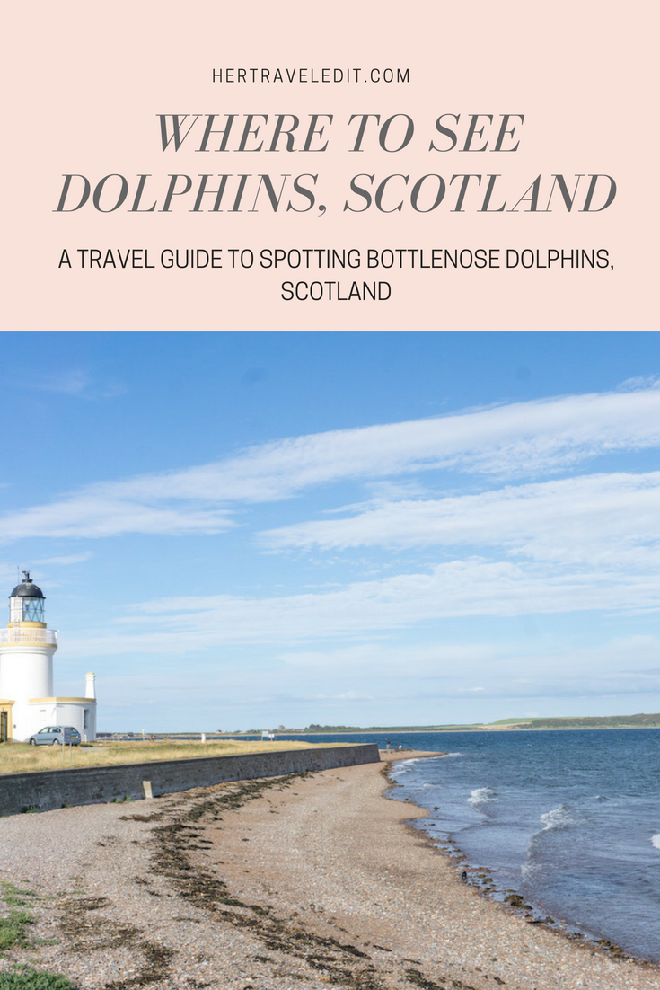 Where to Spot Dolphins in the Scottish Highlands