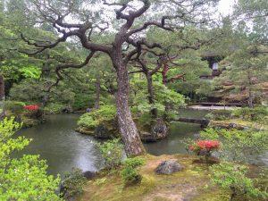 Yolo Travel Experiences Kyoto Silver Temple