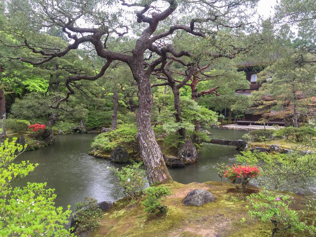 Yolo_Travel_Experiences_Kyoto_Silver_Temple