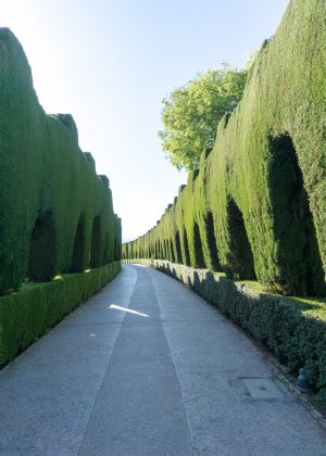 Entrance to Generalife Gardens at the Alhambra