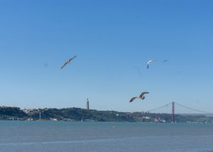 View from Praca do Comercio Lisbon