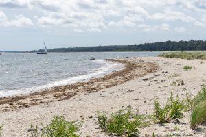 Beaches on Shelter Island