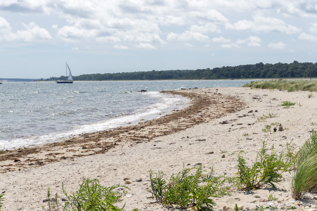 Beaches on Shelter Island
