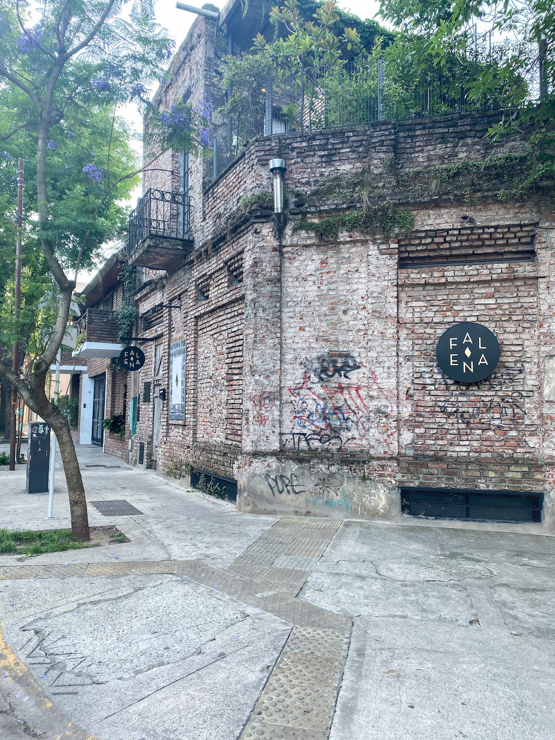 Falena Bookstore in Buenos Aires
