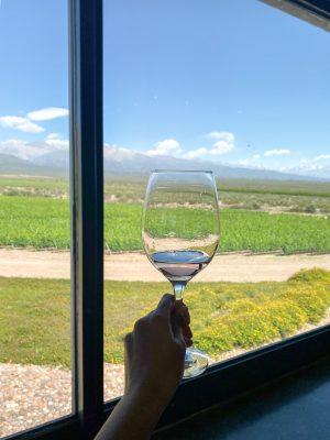 Wine at Diam Andes Tasting Room