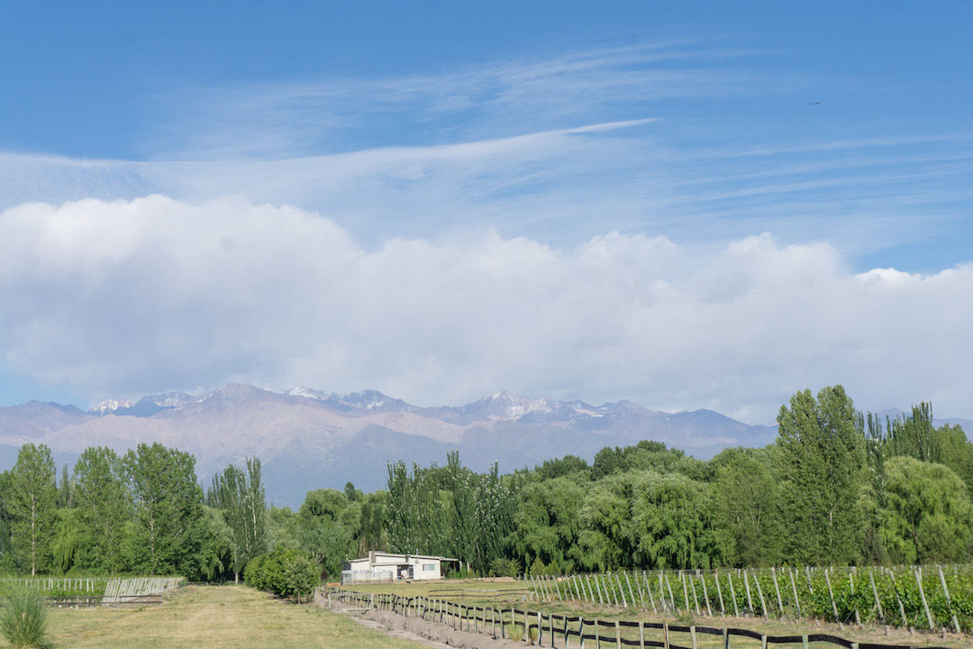 Where to Stay, Wine and Dine in the Valle de Uco, Mendoza