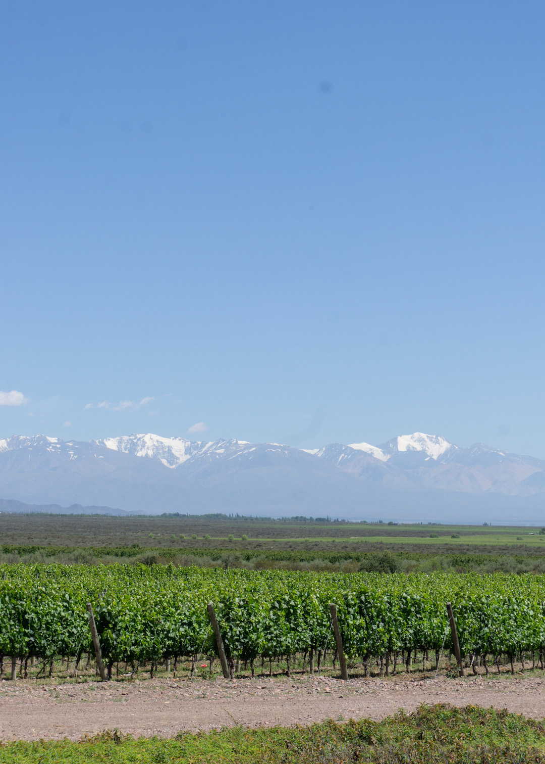 Her_Travel_Edit_Valle_de_Uco_Andes_Mountains