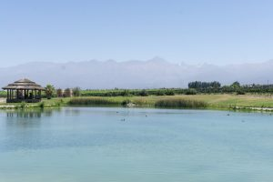 Domaine Bousquet Winery in Mendoza