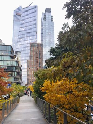 Fall in New York City - High Line