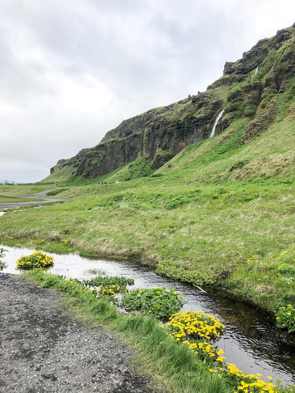 Gljúfrabúi Waterfall in Iceland